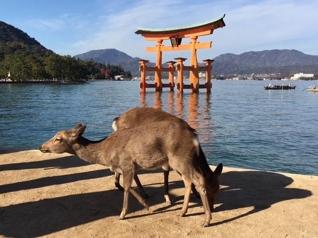 広島の旅 その2